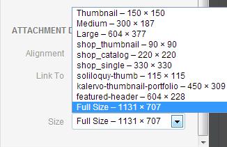 image_sizes_not_translated